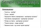 """""""Белем җәүһәрләре - 2013"""" IV Бөтендөнья интернет-проектлар бәйгесе"""